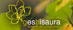 gesbisaura